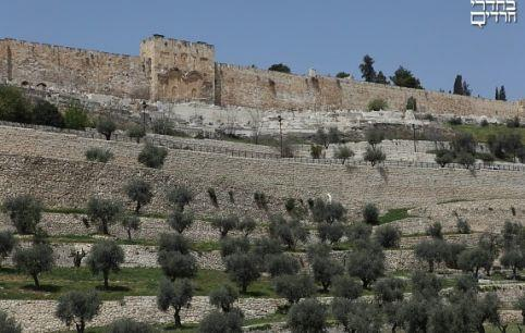 The Mount of Olives Lookout